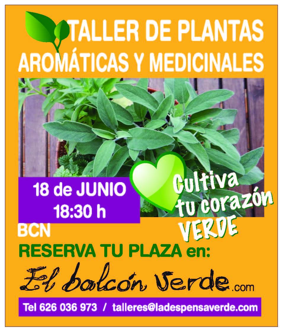 Taller de plantas araomaticas y medicinales